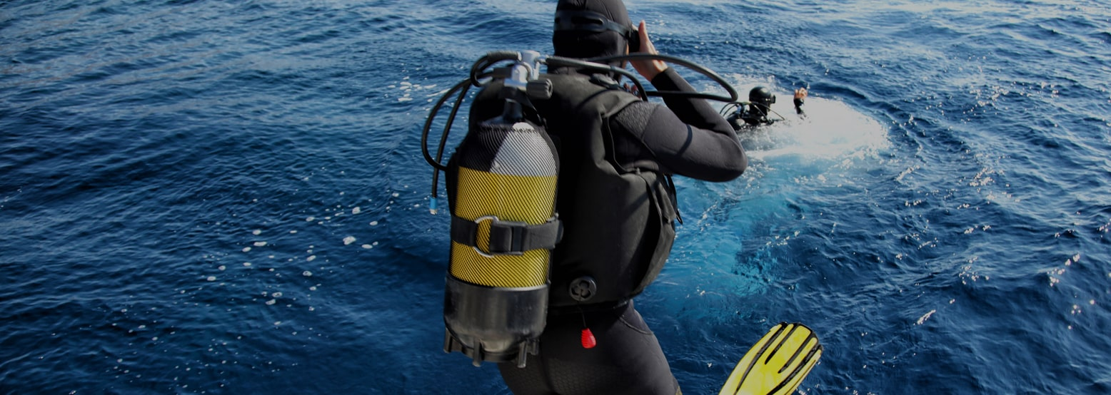 Divers Cove Banner